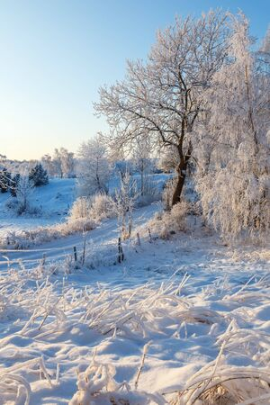 sweden winter: Idyllic winter landscape with snow and frost Stock Photo