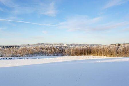 Rural view with snow and frost in the landscape
