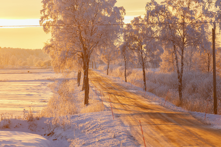 Sunset light in a winter landscape with a country road