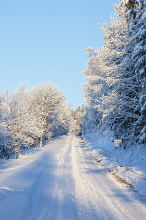 Winter forest road with snow and frost in the landscape
