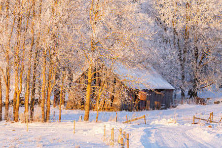 Old rustic barn in a winter landscape in the countryside Stock Photo