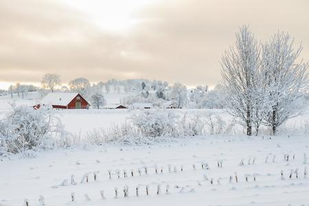 Wiejski zimowy krajobraz z gospodarstwem rolnym Zdjęcie Seryjne