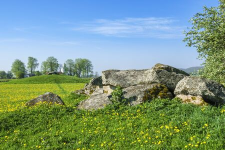 Passage grave with blooming dandelions in a rural summer landscape