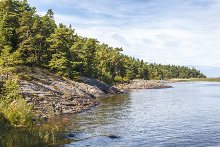 Rocky coastline view with forest Stock Photo
