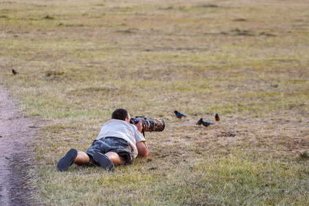 Nature photographer photographing birds lying down