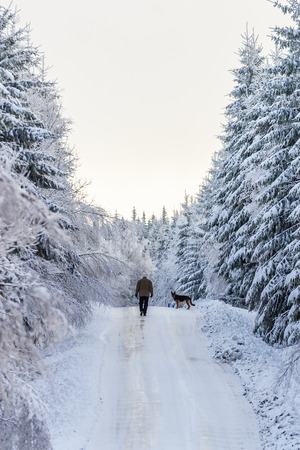 Man walking with his dog on a winter road in the woodland Фото со стока