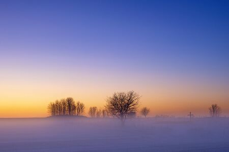 Cold winter morning with fog and trees in silhouette Imagens