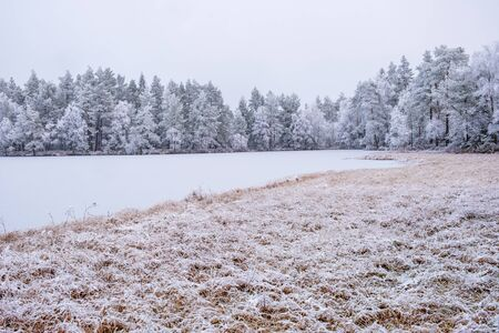 Frozen forest lake in the wilderness Imagens