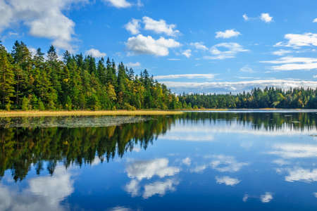 Beautiful Forest lake with reflections in the water in late summer