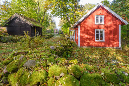 Rural idyll with cottages in the fall