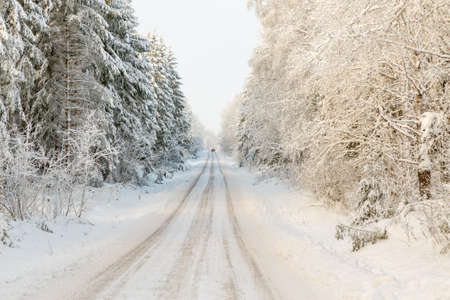 Winter road through the forest with snow and frost
