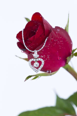 Heart pendant with diamond and red rose on white background  Stock Photo - 11944435