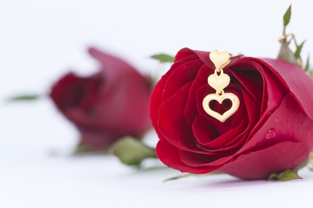 Gold heart pendant and red rose on white background Standard-Bild