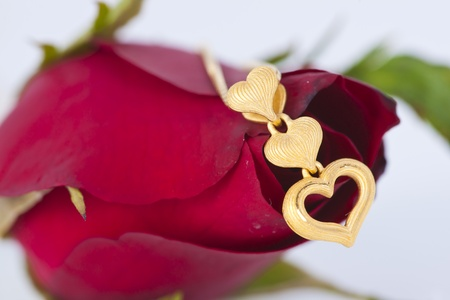 Gold heart pendant and red rose on white background Stock Photo - 11944436