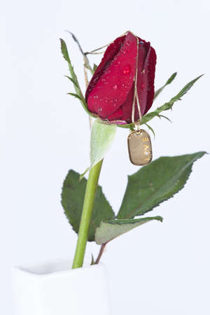 Gold pendant with diamond and red rose on white background photo