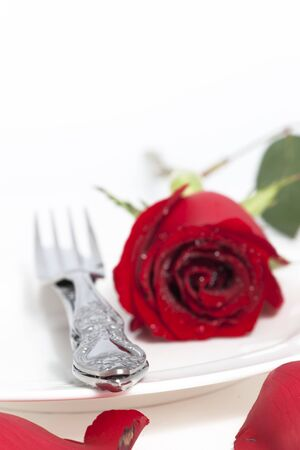 Valentine Series, Red rose and cutlery on white plate, focus at fork Stock Photo - 12123636