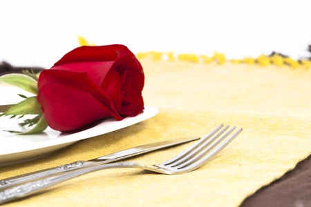 Valentine Series, Red rose and cutlery on white plate Stock Photo - 12123639