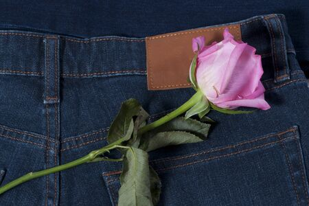 Pink rose on the blue jean photo