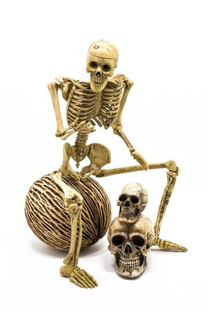 squelette: Squelette Modèle assis sur le ballon, fond blanc isolé
