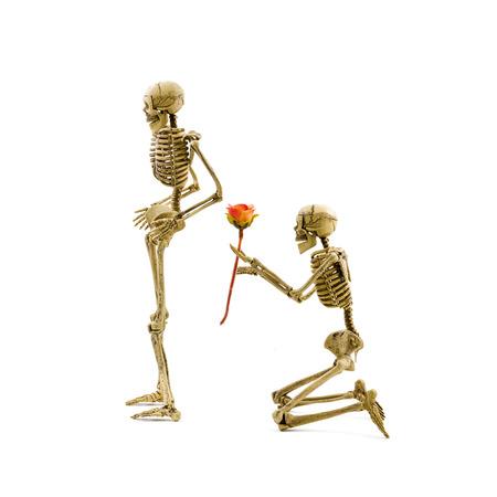 arrodillarse: ¿Te casarias conmigo? Esqueleto modelo arrodillan hacer la propuesta a su novia y dándole una rosa. Aislado en el fondo blanco Foto de archivo