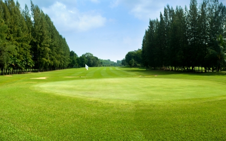 green golf field with sky (course)