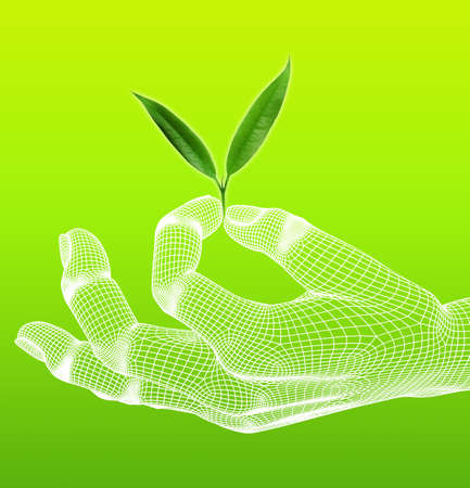 eco with 3d hand render wireframe on green background Stock Photo - 16050853