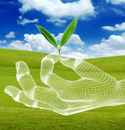 eco with 3d hand render wireframe on green grass and blue sky  Stock Photo