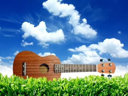 Ukulele with blue sky   Stock Photo