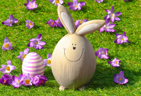 Easter bunny in grass with flowers and Easter decorations