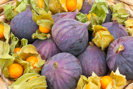 figs and physalis