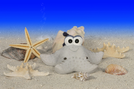 funny starfish with sea shell decorations under water