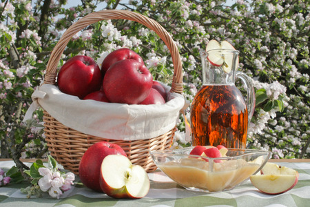table with red apples in a basket with apple juice and a bowl of applesauce and apple tree in background