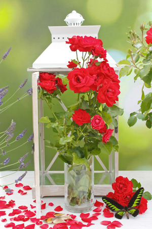 red roses bouquet with lantern and exotic butterflies on table