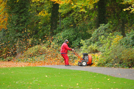 employee with leaf blower removes flowers in a park in autumn Standard-Bild