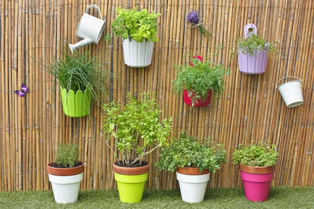 herbs in colorful pots with garden decorations