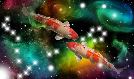 sign of the zodiac pisces - portrait of two fish in a colorful universe with some galaxies and stars
