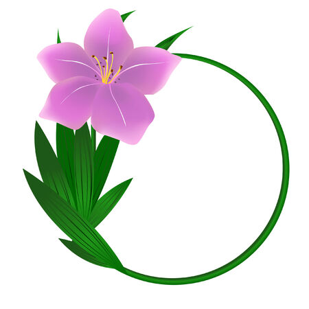 Bella rotonda sfondo di fiori di giglio Vettoriali