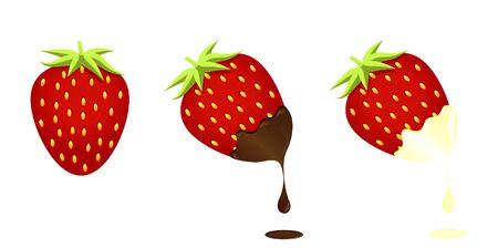 Strawberry with chocolate and white cream