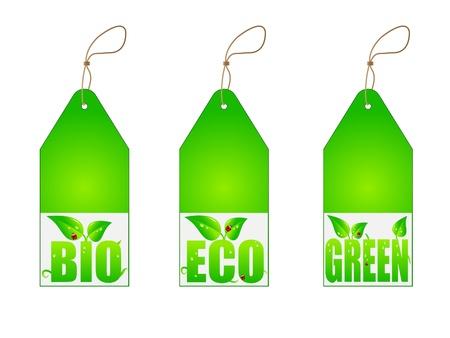 Set of green labels Vector