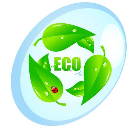 ecologic: Concepto ecol�gico