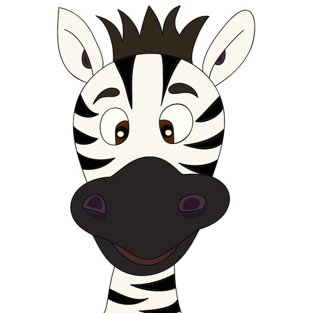 zebra: Zebra cartoon