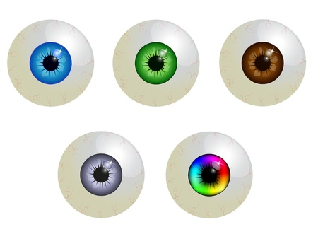 brown eyes: set of eyeballs Illustration