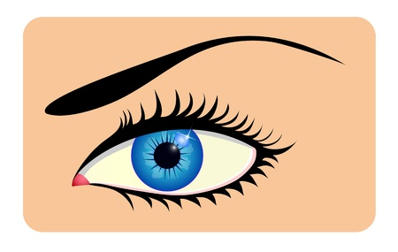 Close up of beautiful eye Vector