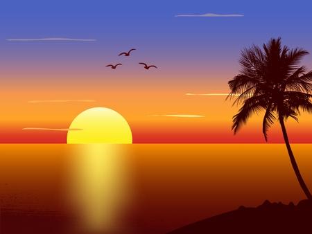 Puesta de sol con la silueta de palmeras