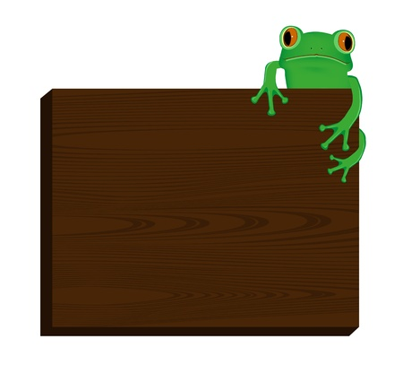 green tree frog: Green tree frog sitting on wood background