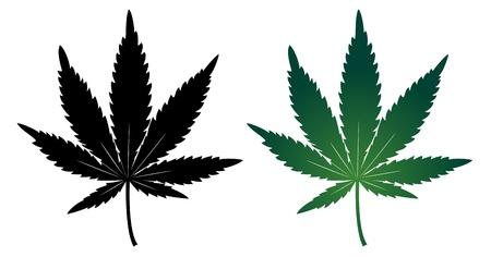 cannabis: Cannabis Blatt