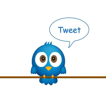 Blue bird assis sur la corde, en chantant