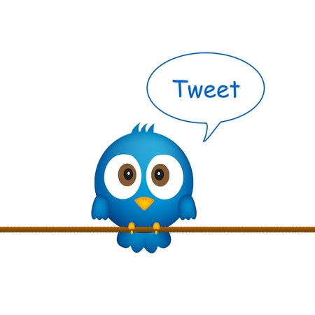 interaccion social: P�jaro azul sentado en la cuerda, cantar