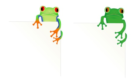 tree frog: 2 frogs in corner of page
