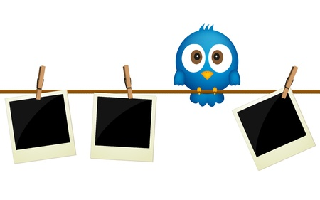 Three blank photos hanging on rope with blue bird sitting between them